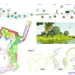 Colaboración en concurso para restauración de una gravera (colectivo 7z)